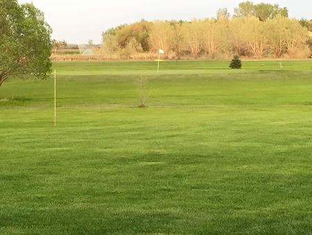 Shamrock Golf Course Cover Picture