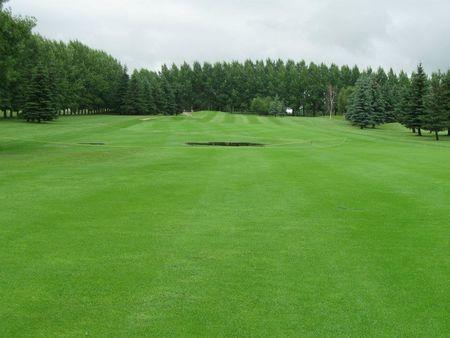 Silver Creek Golf Course Cover Picture