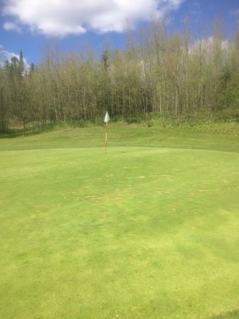 Snow Lake Golf Club Cover