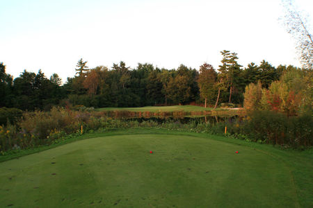 Springfield Golf and Country Club Cover Picture