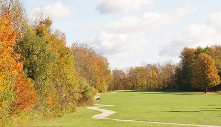Stone Tree Golf Club Cover Picture