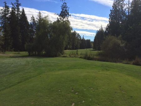 Tall Timber Golf Course Cover Picture