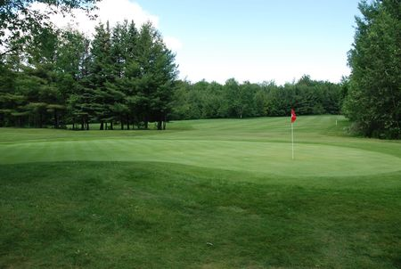 The Wilds at Cedar Valley Golf Course Cover