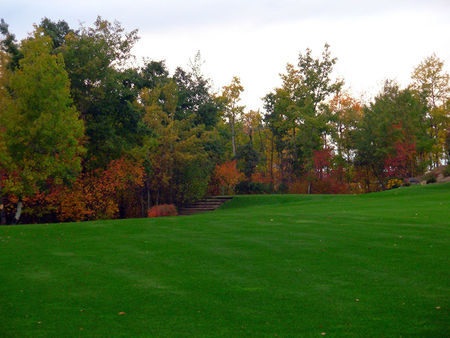 Top O' The Hill Golf Course Cover Picture
