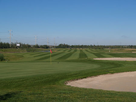 Twin Willows Golf Club Cover