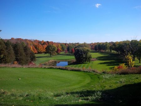 Whitevale Golf Club Cover Picture