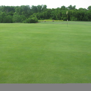 Alva golf and country club cover picture
