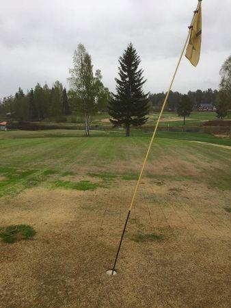 Hasselakollektivet golfklubb cover picture