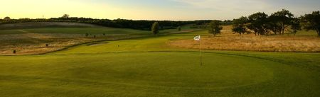 Ronneback golf club cover picture