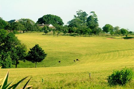 Overview of golf course named Eshowe Hills Eco Estate