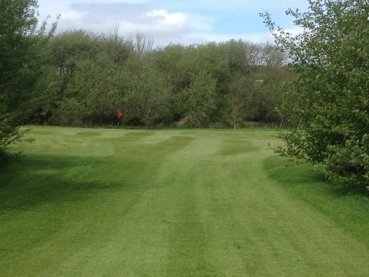 Caerleon golf club cover picture