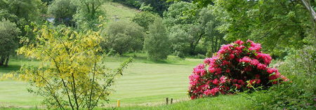 Cilgwyn golf club cover picture