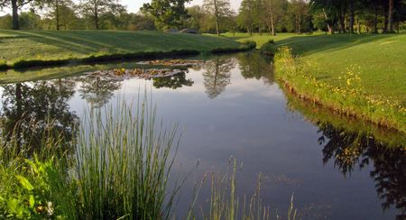 Padeswood and Buckley Golf Club Cover Picture