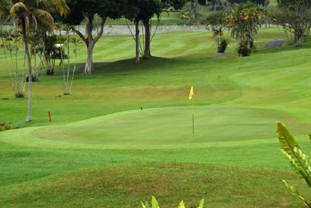 Overview of golf course named Palm Resort Golf and Country Club - Allamanda