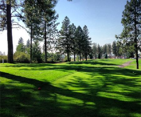 Silver Fox Golf Course Cover Picture