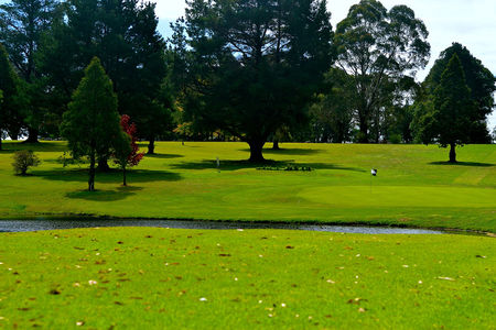 Glen innes golf club cover picture