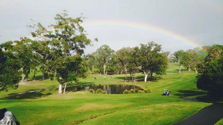 Headland Golf Club Cover
