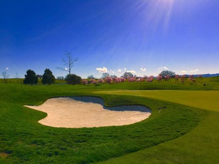 Coyote Creek Golf Club Cover Picture