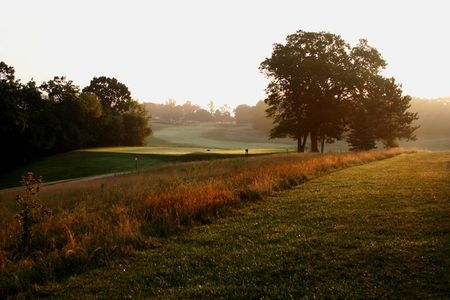 Lawsonia - The Links Cover Picture