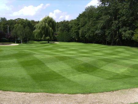 Golf Club Krokkebaas Cover Picture