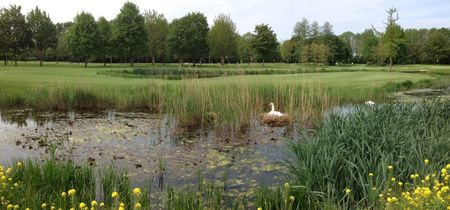 Golfclub 'Oude Maas Cover Picture