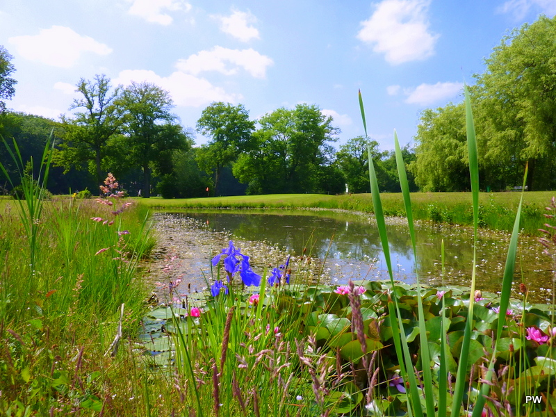Overview of golf course named Enschedese Golfclub Prinses Wilhelmina
