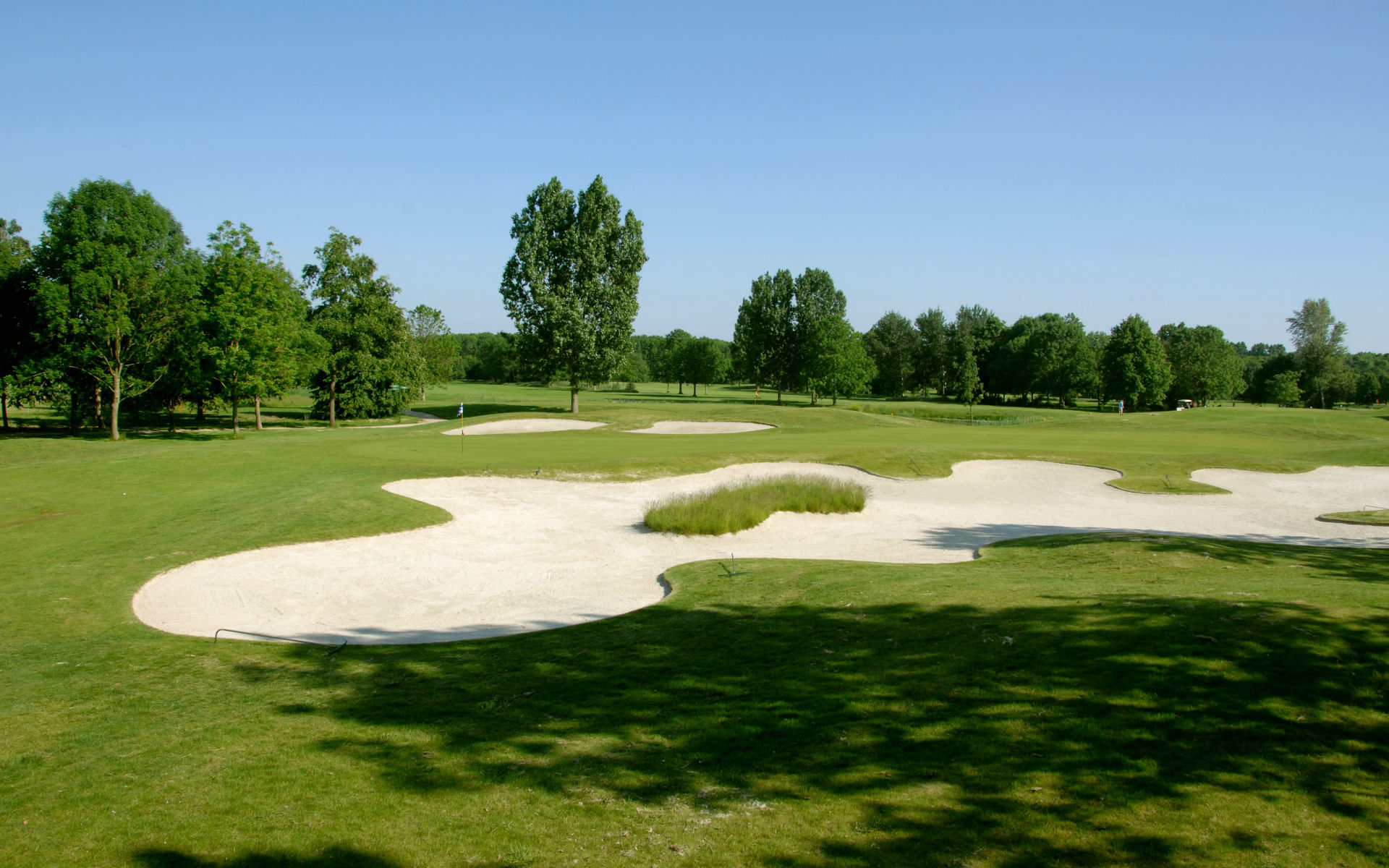 Almeerderhout golf club cover picture