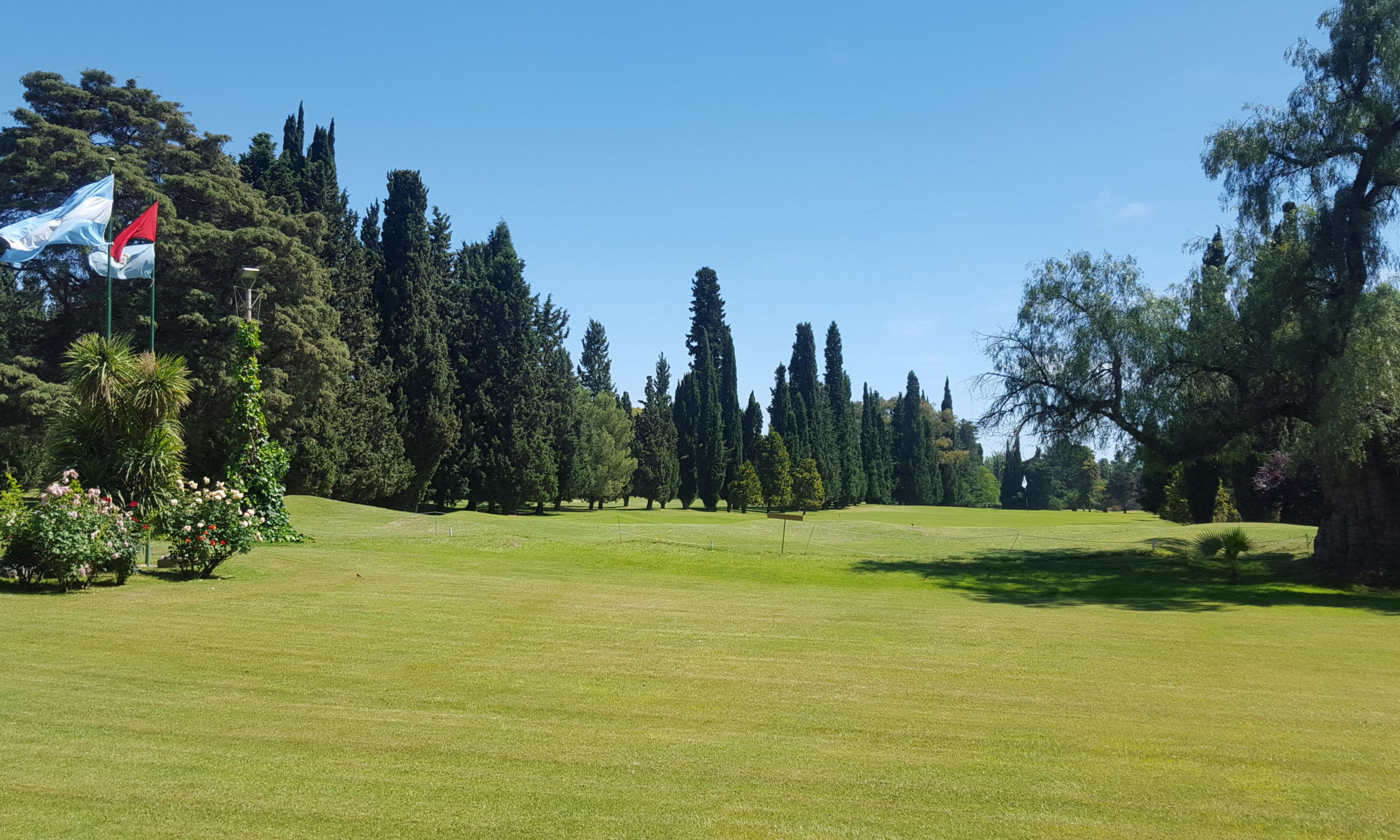 Andino golf club cover picture