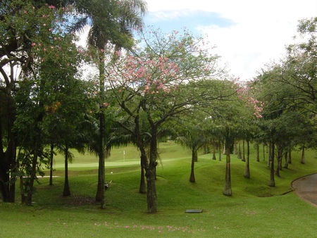 Overview of golf course named Clube de Campo de Sao Paulo