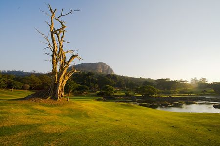 Leopard Rock Golf Club Cover Picture