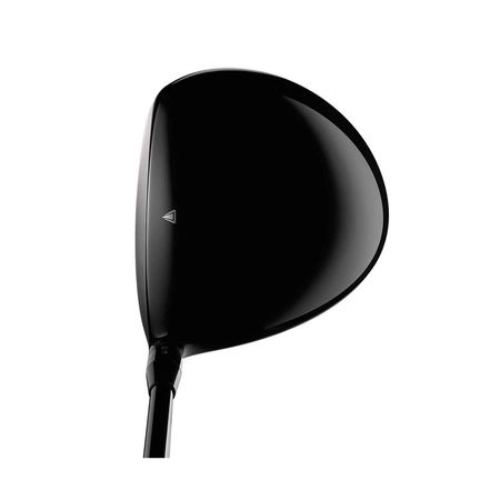 Driver TS2 from Titleist