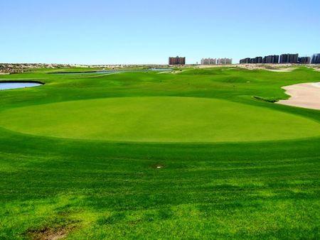 The Links at Las Palomas Resort Golf Club Cover