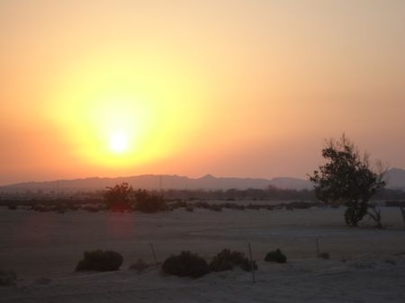 Al Dhafra Golf Links Cover Picture