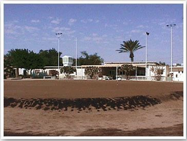 Mesaieed Golf Club Cover Picture