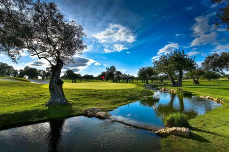 Quinta de Cima Course Cover Picture