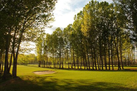 Overview of golf course named Golf Risco Plateado and Resort