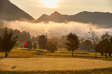 Golfclub Walchsee Moarhof Cover Picture