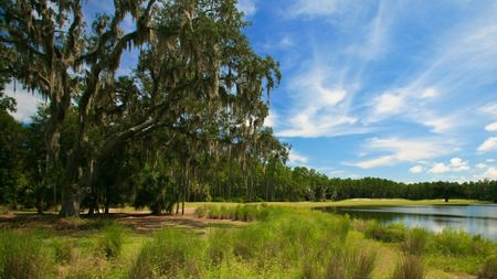 Hammock Dunes - Creek Course Cover Picture