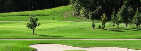 Lime Trees Park Golf Club Cover Picture