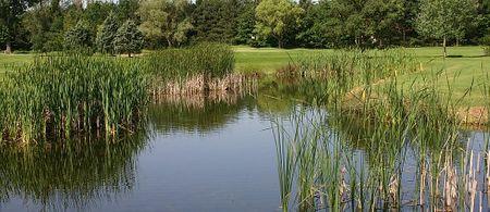 Golf Club Du Forez Cover Picture