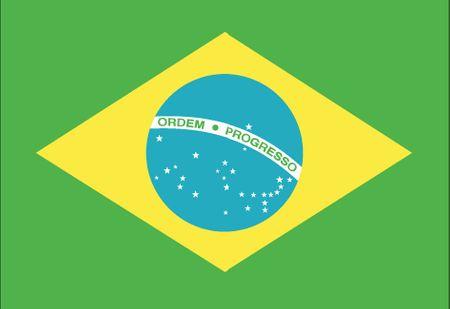 Rio de Janeiro Flag