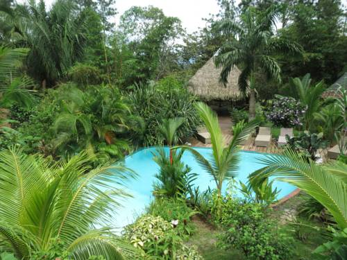 Monkey Lodge Panama Cover Picture