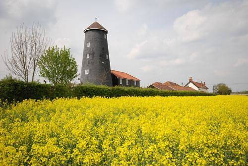 Yaxham Mill Cover Picture