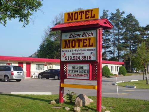 The Silver Birch Motel Cover Picture