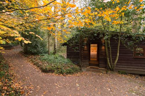 Pinetum Lodge Cover Picture