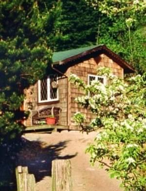 Alderwood Farm Cozy Cottage Cover Picture