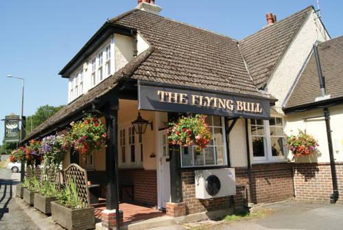 The Flying Bull Inn Cover Picture