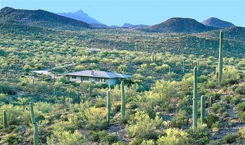 Tucson Vacation House in a Wildlife Sanctuary Cover Picture