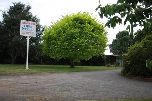 Opal Motel Cover Picture