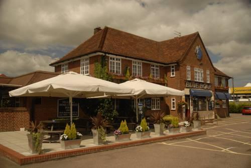 Blue Boar Inn Cover Picture
